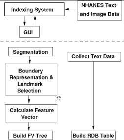 Image CBIR2 Indexing System