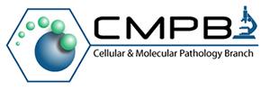 CMPB: Cellular & Molecular Pathology Branch