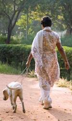 Photo of a woman walking a dog