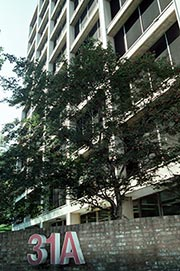 Building 31A
