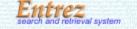 Jump to NCBI's Entrez Search and Retrieval System button