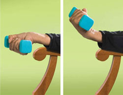 Photo diagram of wrist curl