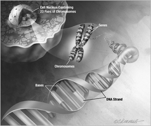 Graphic of DNA, Genes, and Chromosomes
