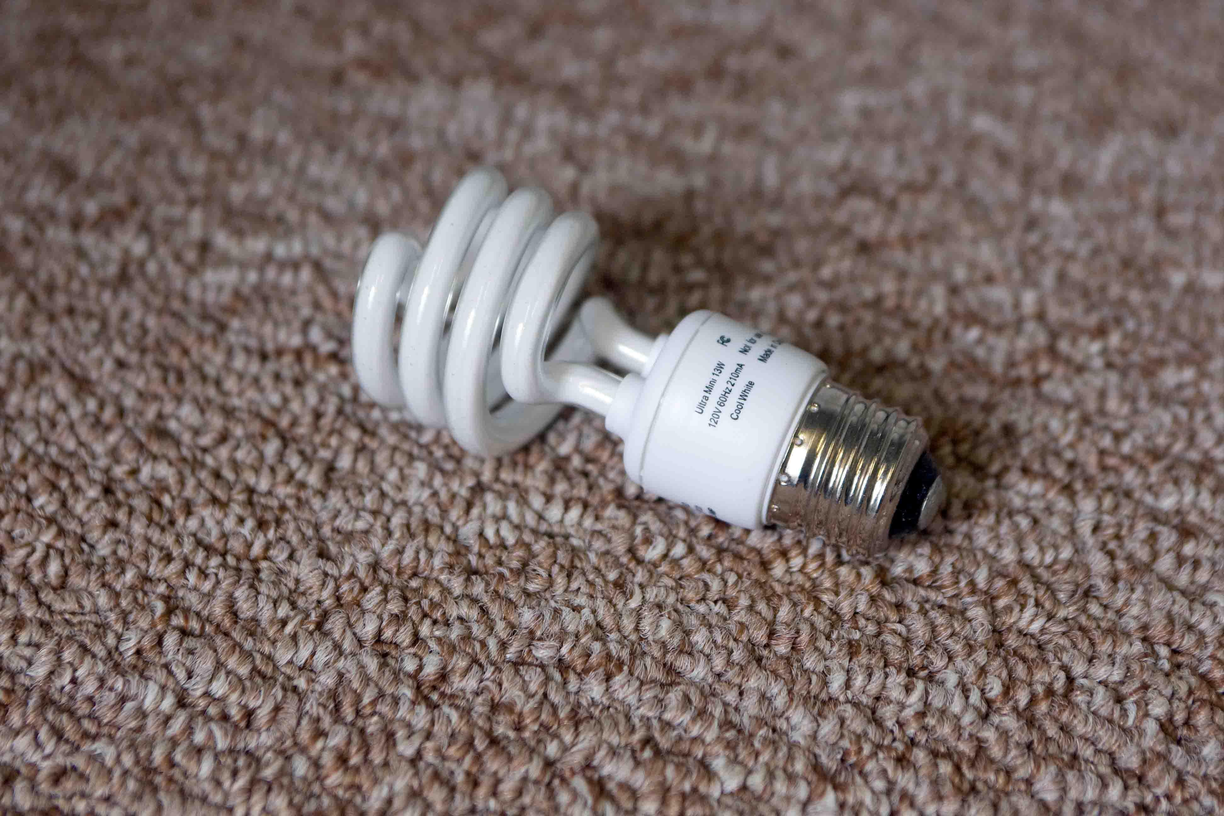 CFL on Carpet