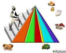 Ilustración de la pirámide de los grupos básicos de alimentos