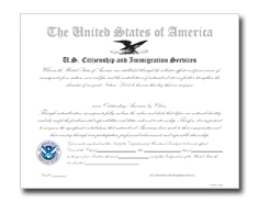 Outstanding American by Choice Certificate