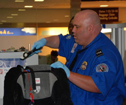 TSO screening a bag