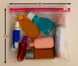 Photo of a quart-size baggie, with 3oz liquid bottles.