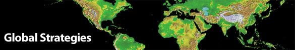 Global Strategies header image of the globe