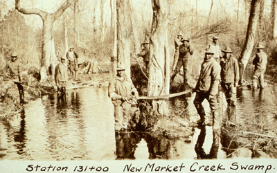 New Market Creek swamp, Louisiana:  malaria eradication program