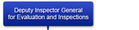 Deputy Inspector General for Evaluation and Inspection