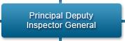 Principal Deputy Inspector General