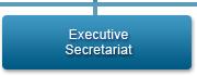 Executive Secretariat
