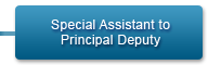 Special Assistant to Principal Deputy