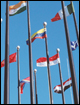 Explore the World of International Affairs