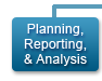 Planning, Reporting, and Analysis