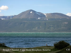 SubAntarctic Biocultural Conservation at Cape Horn