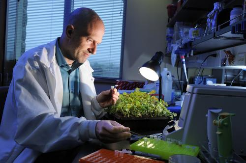 Virginia Tech scientist proposes revolutionary naming system for all life on Earth
