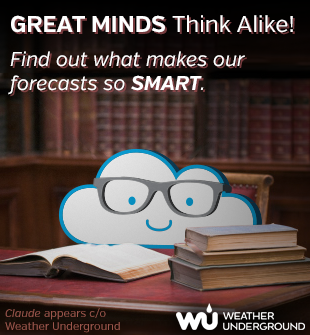 Great minds think alike, find out what makes our forecasts so smart